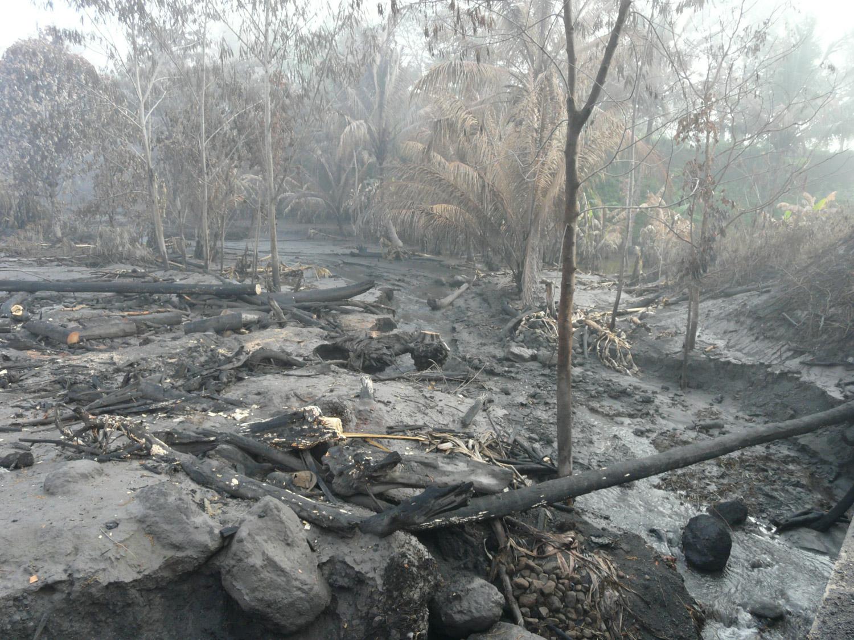 <b>Después de la erupción del Merapi 3</b><br>14 Noviembre 2011